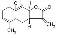 木香烃内酯